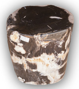 Petrified Wood Log Stool PF-2128 by AIRE Furniture