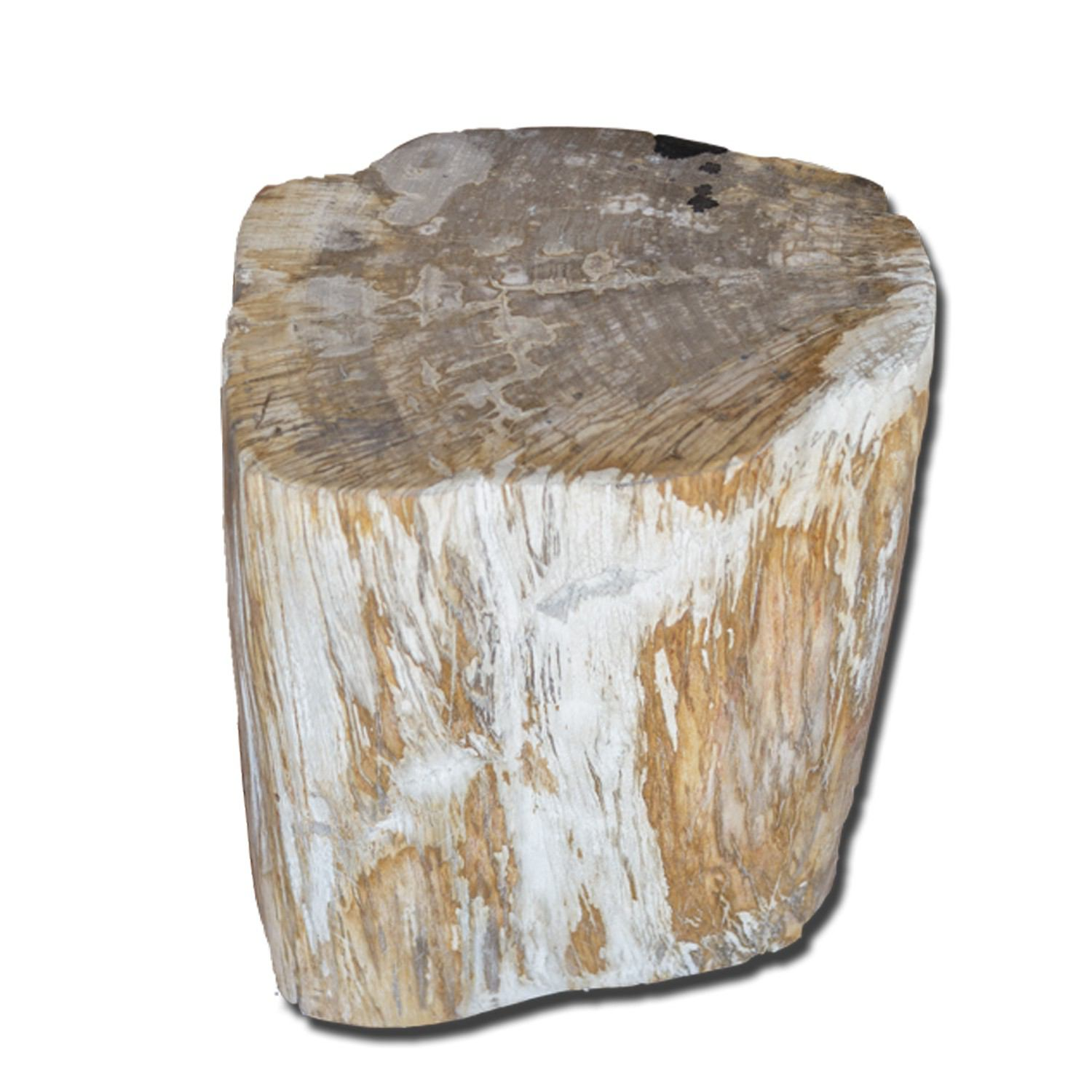 PF-2131 Petrified Wood Stool by AIRE Furniture