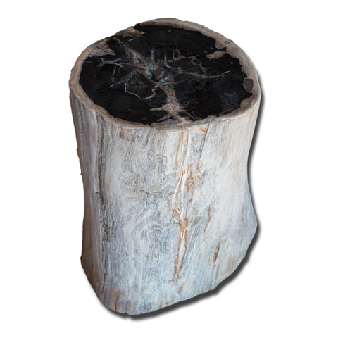 Petrified Wood Stool PF-2137