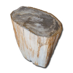Petrified Wood Stool PF-2139