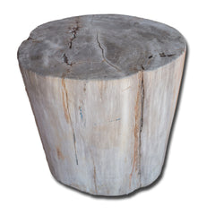 Petrified Wood Stool PF-2142