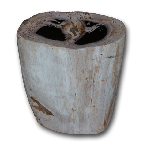 Petrified Wood Stool PF-2150