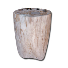 Petrified Wood Stool PF-2152