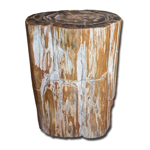 Petrified Wood Stool PF-2157