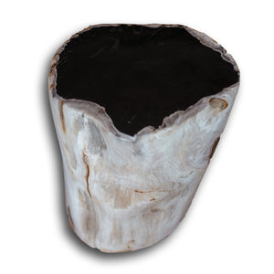 Petrified Wood Stool PF-2160