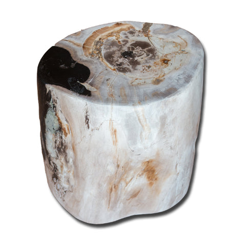 Petrified Wood Stool PF-2164