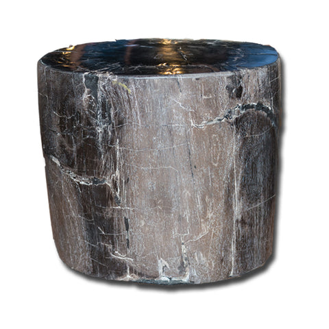 Petrified Wood Stool PF-2167