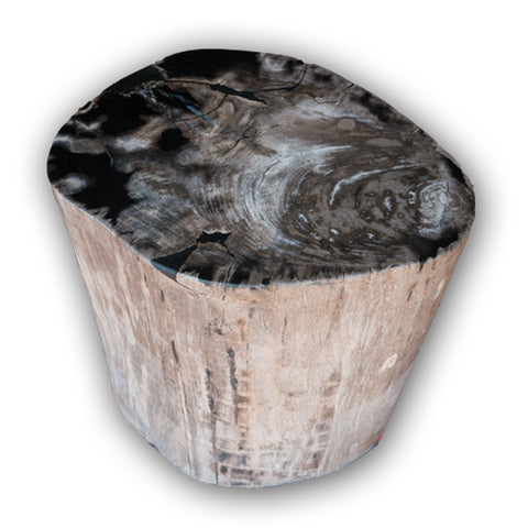 Petrified Wood Log Stool PF-2101