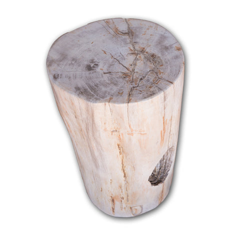 Petrified Wood Log Stool PF-2105