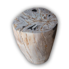 Petrified Wood Log Stool PF-2106