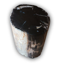 Petrified Wood Log Stool PF-2116