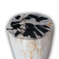 Petrified Wood Cream Periphery/Black Center Rare Side Table by Aire