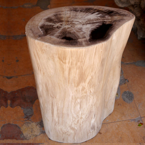 Petrified Wood Stool PF-2120