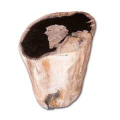 Petrified Wood Log Stool PF-2122