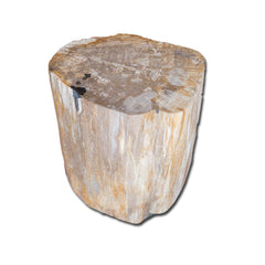 Petrified Wood Stool PF-2131