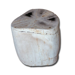 Petrified Wood Stool PF-2134