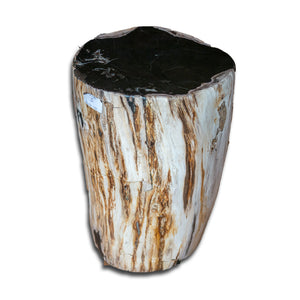 Petrified Wood Stool PF-2135