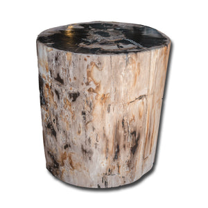 Petrified Wood Stool PF-2153