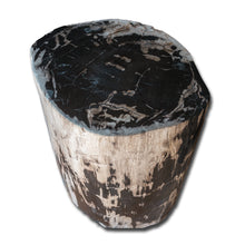 Petrified Wood Stool PF-2154
