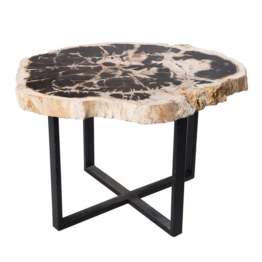 Petrified Wood Upper West Side Table PF-1041 by AIRE Furniture