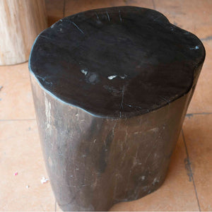 Petrified Wood Log Stool PF-2114