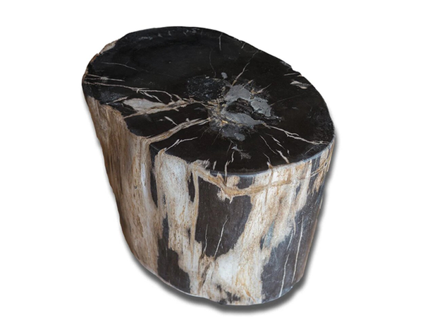 Petrified Wood Accent Stool- Black/Ivory/Brown by Aire
