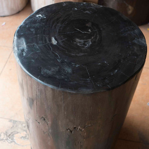 Petrified Wood Log Stool PF-2115