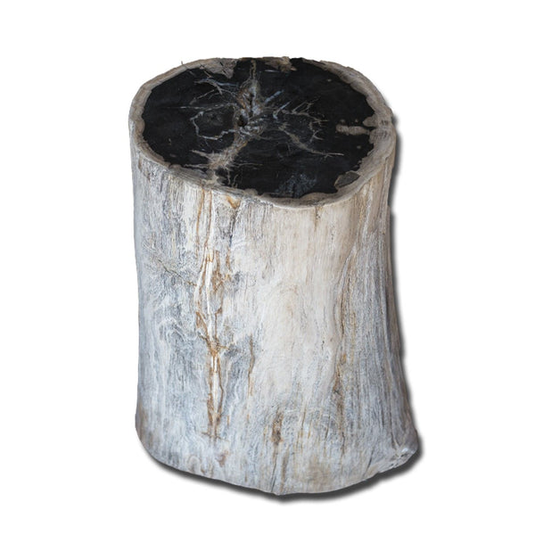 PF-2137 Petrified Wood Stool by AIRE Furniture
