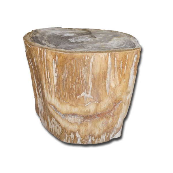 PF-2139 Petrified Wood Stool by AIRE Furniture
