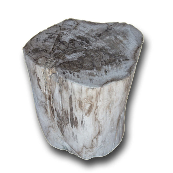 PF-2140 Petrified Wood Stool by AIRE Furniture