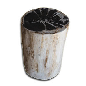PF-2146 Petrified Wood Stool by AIRE Furniture