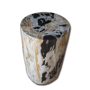 Petrified Wood Stool - PF-2147 by AIRE Furniture