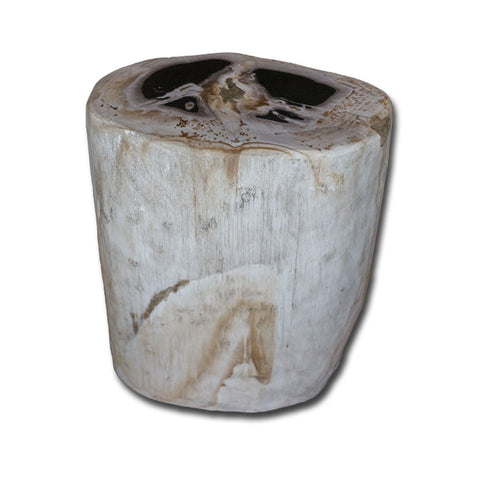 PF-2150 Petrified Wood Stool by AIRE Furniture