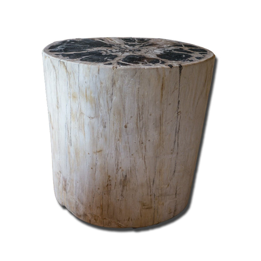 PF-2156 Petrified wood stool by AIRE Furniture