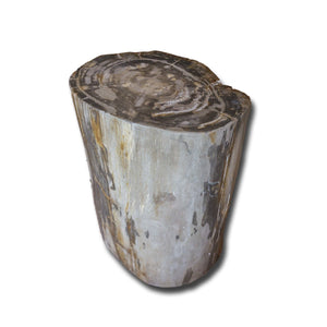 PF-2157 Petrified Wood Stool by AIRE Furniture