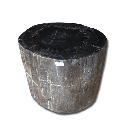 PF-2167 Petrified Wood Stool by AIRE Furniture