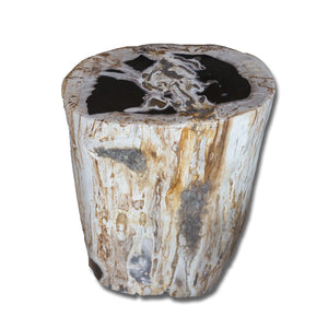 PF-2168 Petrified Wood Stool by AIRE Furniture
