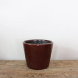 Medium Planter in Spice