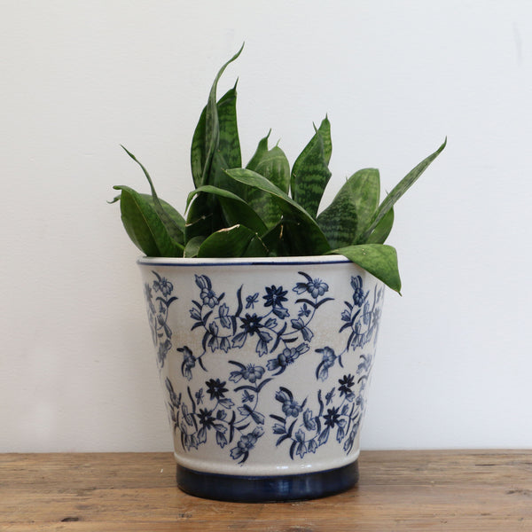 Blue and White Floral Planter