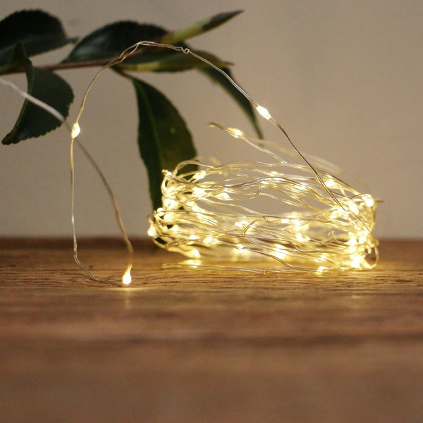Silver Wire Battery Powered Seed Lights