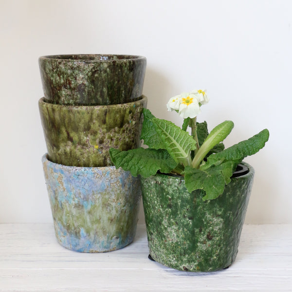 Assorted Green Planters