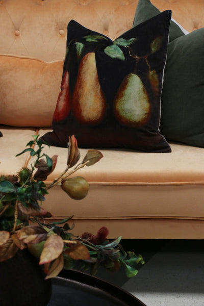 Raphael Vintaged Velvet Cushion Cover with Linen back - Trois Poire