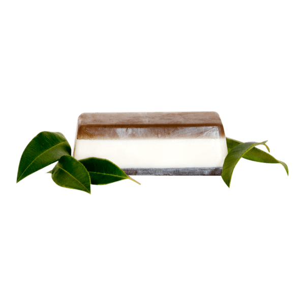 Benzoin Myrtle Body Bar