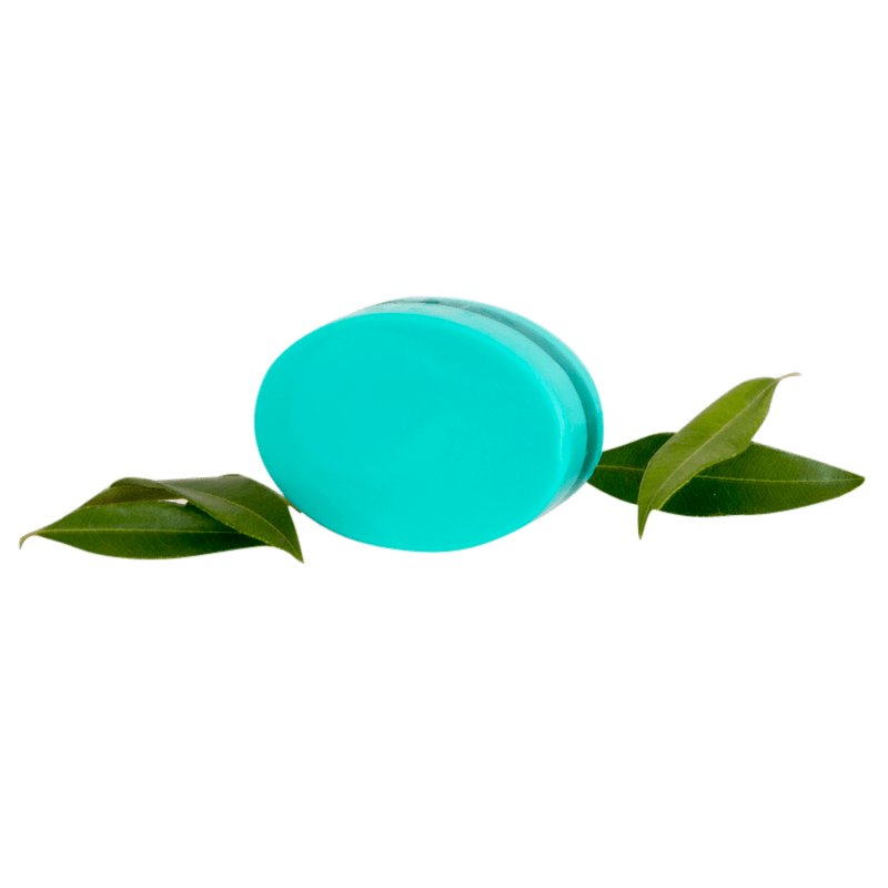 Spearmint Myrtle Body Bar