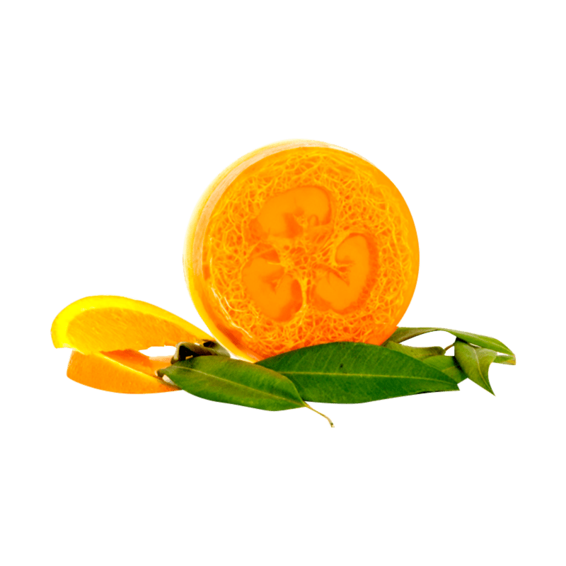 Sweet Orange Myrtle Loofah Body Bar