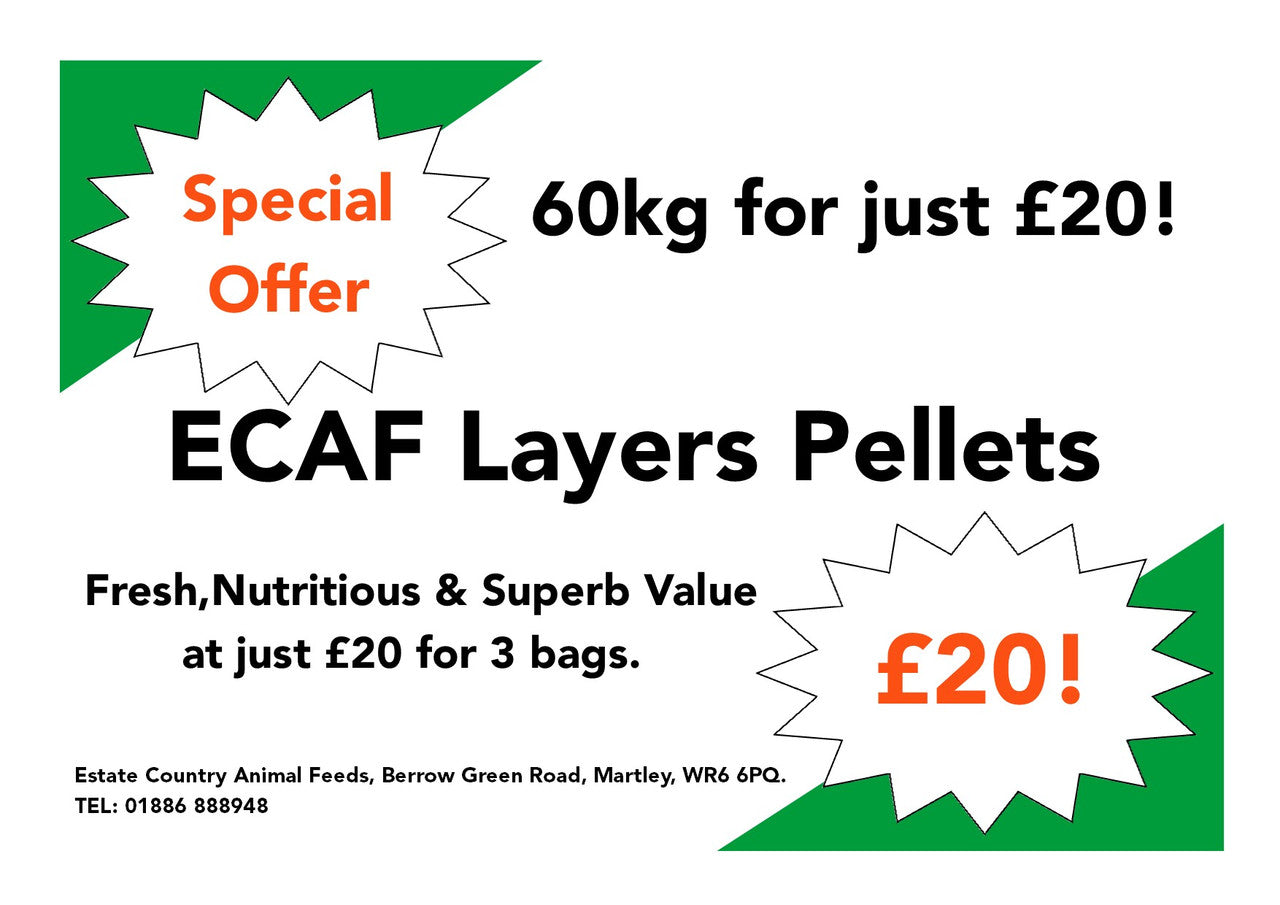ECAF Poultry Layers Pellets