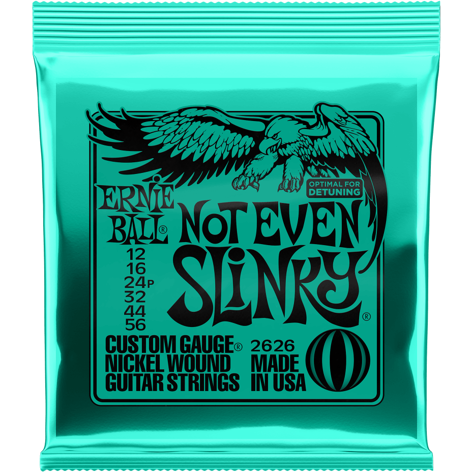Ernie Ball Slinky - Not Even Slinky | Music Experience | Shop Online | South Africa