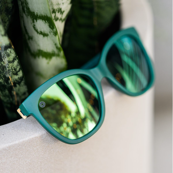 lenoor crown knockaround deja views sunglasses poison ivy