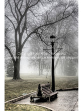 Bench with lamp in mist