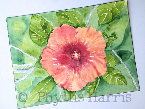 Original Hibiscus Watercolor Painting by Phyllis Harris